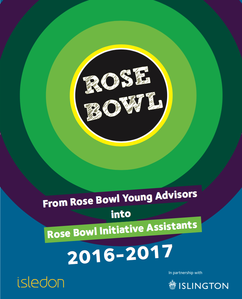 Rose Bowl Initiative Assistants